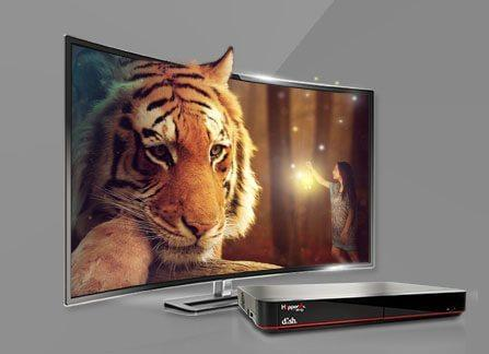 The Leader in HD TV - Tuscumbia, Alabama - Shoals Satellite Sales & Service - DISH Authorized Retailer